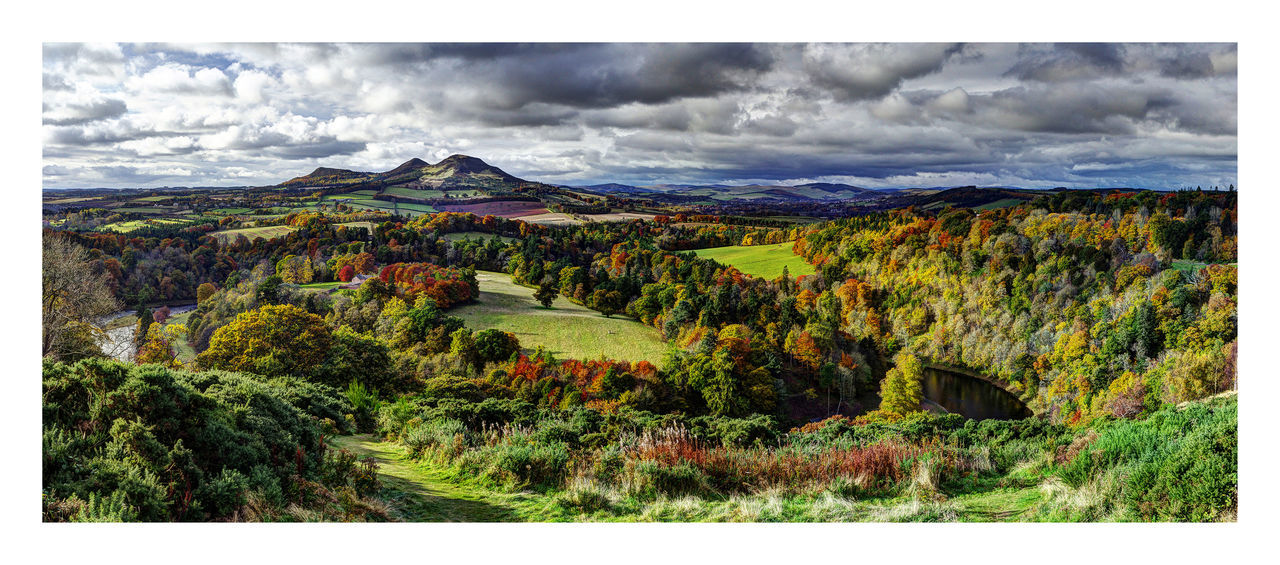 Autumn at Scott's View, Scottish Borders. The iconic view of the Scottish Borders. A view often enjoyed by the author Walter Scott, after whom it is named. Autumn Borders Cloudy Eildon Hills Europe Fall Fall Colors Landscape No People Non-urban Scene Panorama River Tweed Scotland Scott's View Scottish Borders Sky Tranquil Scene Trees Lost In The Landscape