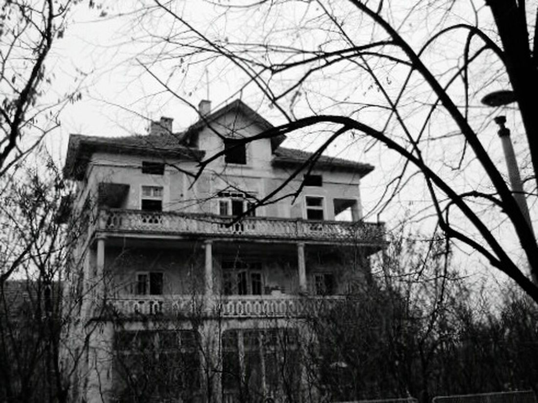 Scery Stories Scery House Old House