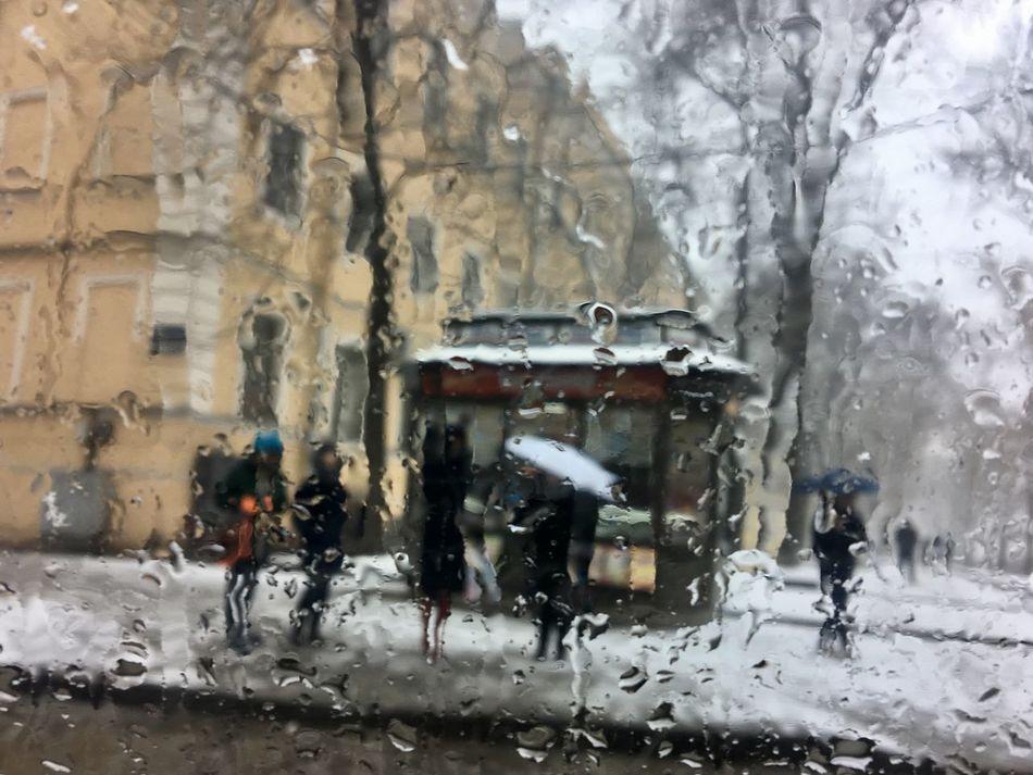 IPhone Snow sidewalk Sidewalk Sleet Falling St. PETERSBURG Russia Umbrellas Art Is Everywhere Art Is Everywhere Art Is Everywhere