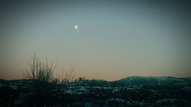 Fly Me To The Moon EyeEm Nature Lover Beautiful Nature Just Breathe Peace ✌ Winter Wonderland