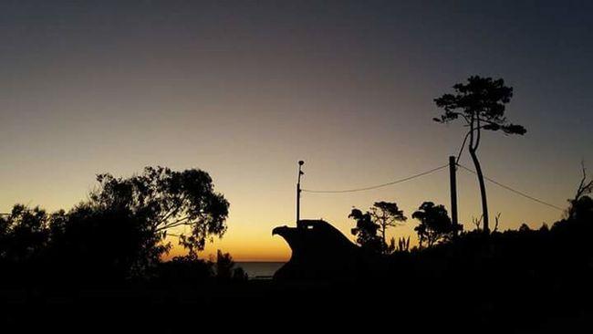 Sunset Beachphotography Aguila Atlantida Uruguay Photography Goodvibes Sun Eagle Coast Art Architecture Culture