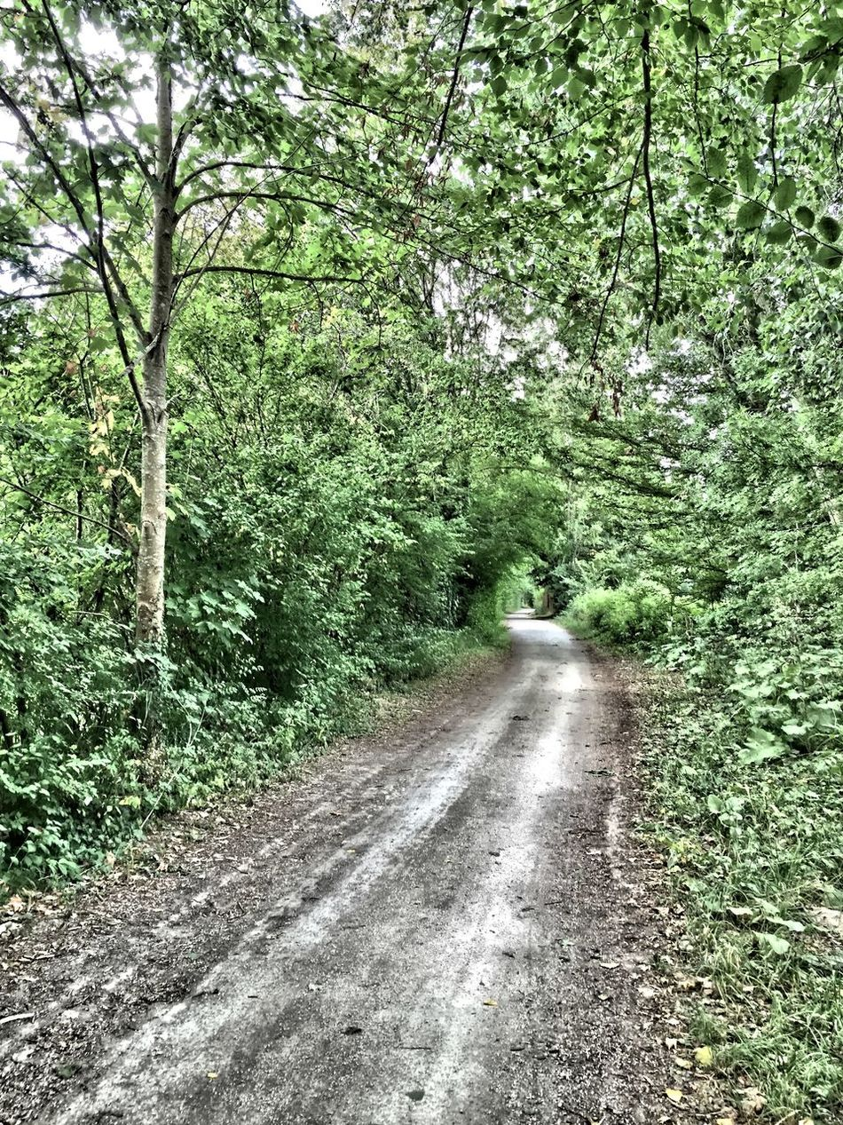En balade Balade Sur Les Chemins