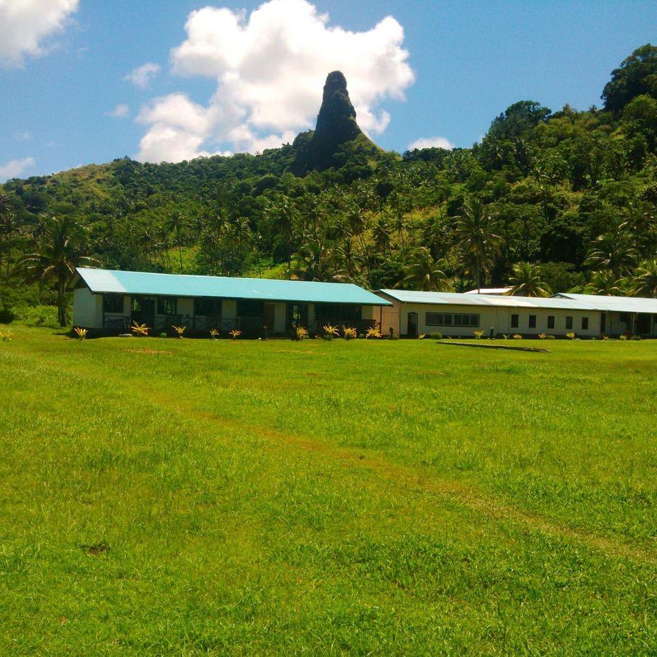Devils Thumb at Loreto Catholic School . Taking Photos Green Green Green!  Nature Ilovenature Beautiful Nature Beautiful Day x