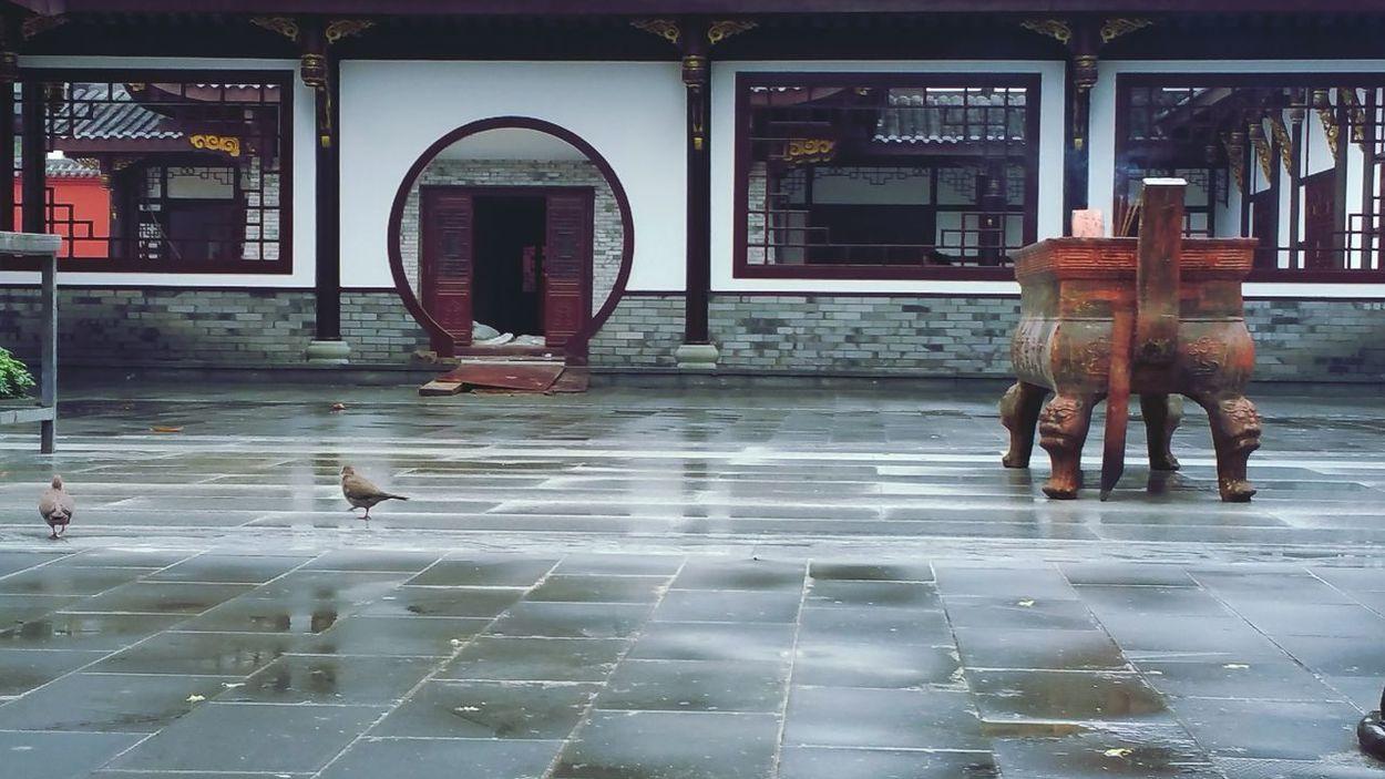 雨后的寺庙 才是它应有的清净 寺庙