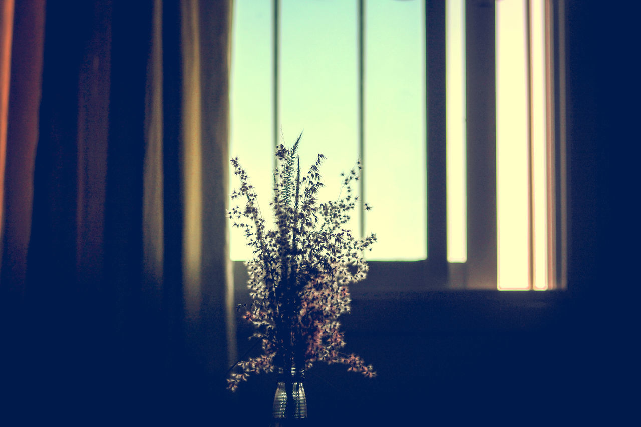 Window Curtain Indoors  Sunlight Frosted Glass Close-up No People Pattern, Texture, Shape And Form Symmetry Minimalism Copy Space Backgrounds Domestic Life Room Interior Lonely Place  Poignant State Of Mind  Shadows Abstract Still Life Depressed Low Light