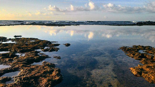 Photooftheday Art Sea And Sky Brazil Brasil BrasilSensacional Salvador Bahia/brazil Nature Photography Love Guapo Einstein Coral Hdrphotography Photos Around You Photoart Foda Barriudobrado