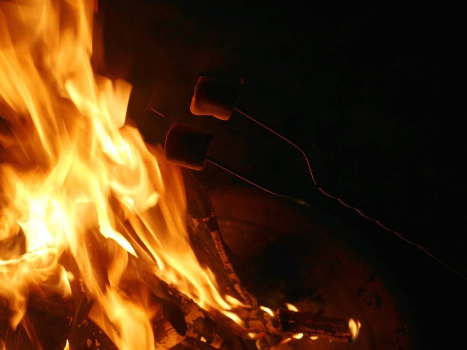 Roasting marshmallows on a fire. Marshmallows Marshmallow Heating Marshmallow Roasting Camping Fun Camping Fire Firepits Firepit Fuego Flames & Fire Burning Flames Dark And Fire Flamed Fire Hot