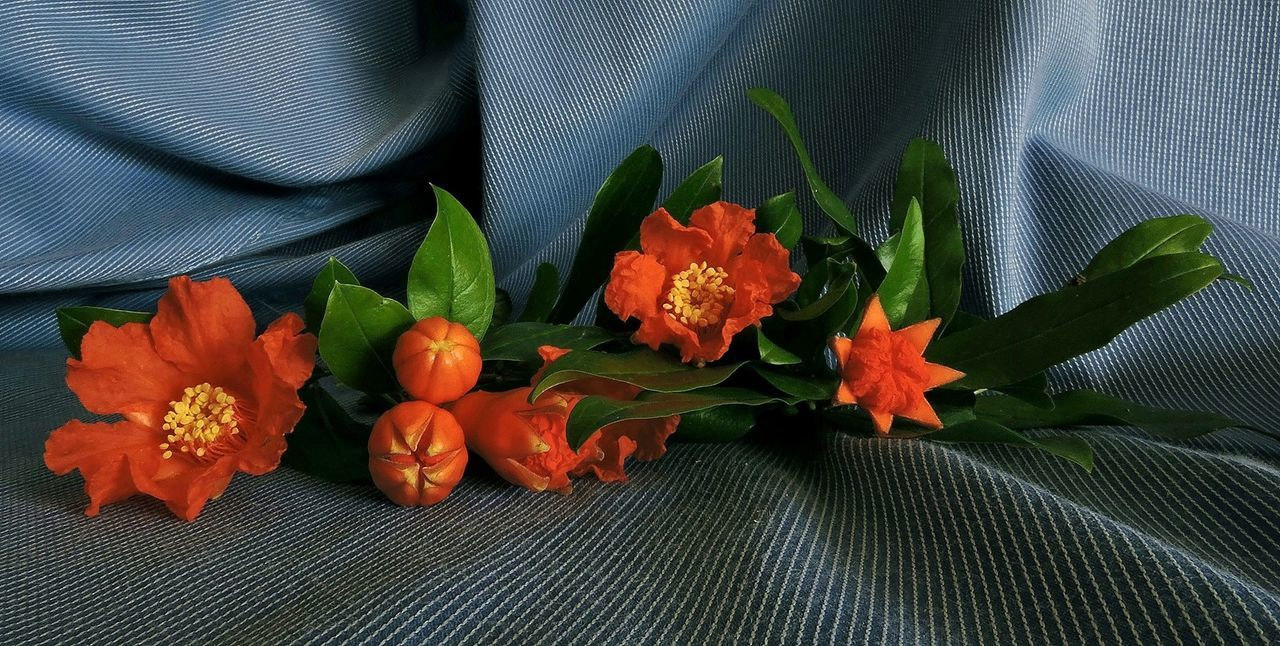Orange Flowers And Buds On Fabric