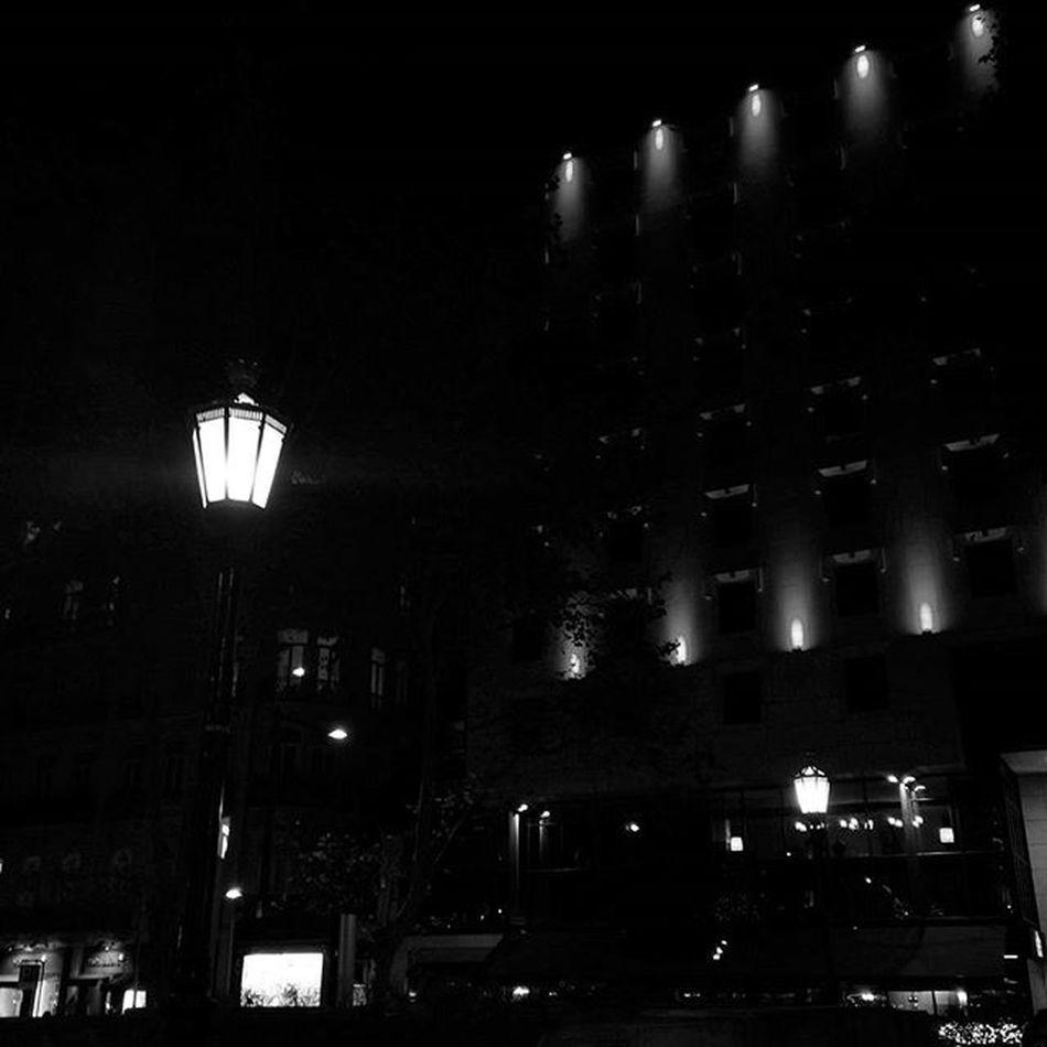 Xmas Lights Shadow Avenue Blackandwhite Blancnoir Night Streetphotography Charming Igersportugal Shootingtheglobe Lovelisbon Lisbon Love Liveit Enjoyit Laliphotography Follow4follow P3top Vscolife Vscolove VSCO