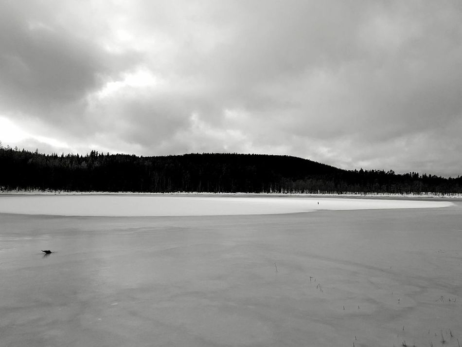 Landscape Nature Beauty In Nature Scenics Outdoors Sky Tree Tranquility Winter Monochrome Black And White Snow Lake Ice Miles Away Welcome To Black