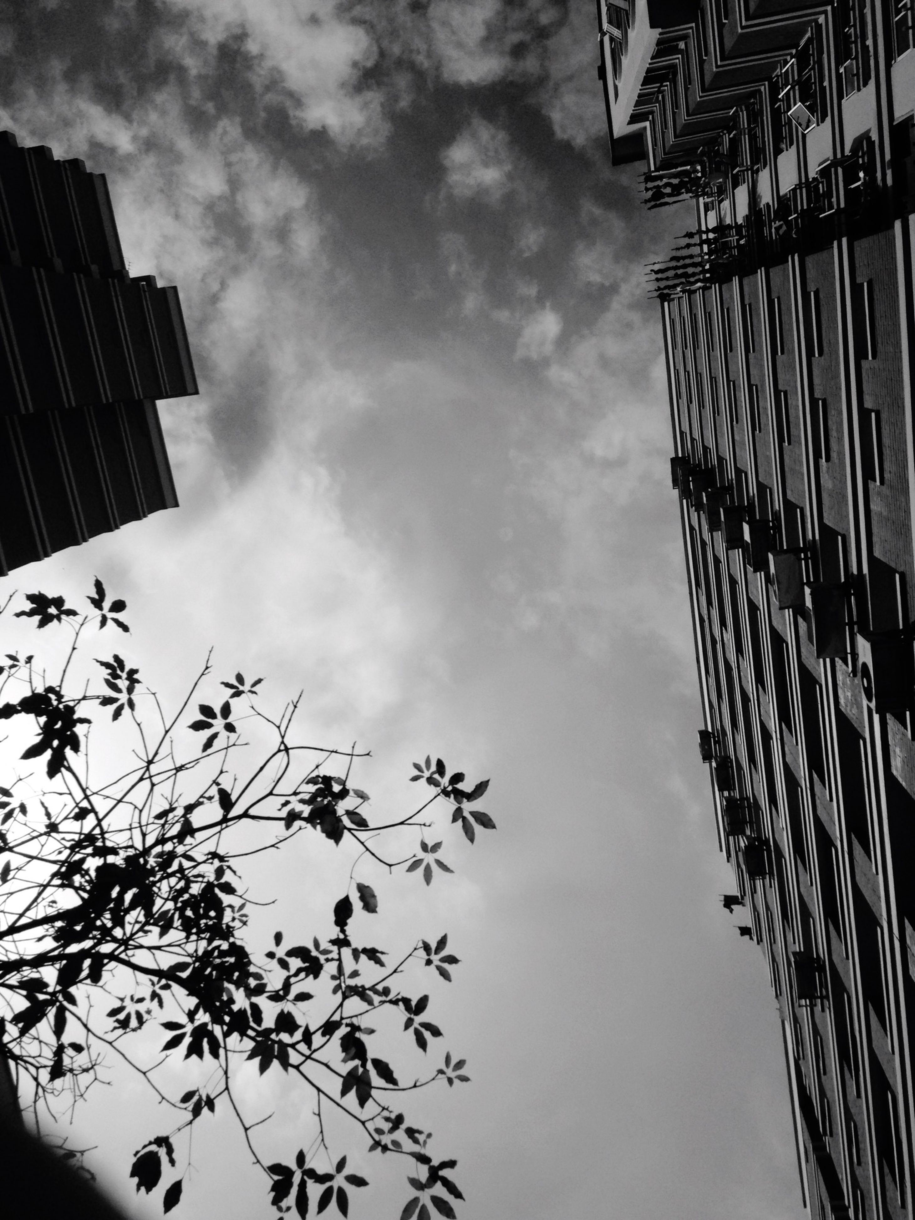 low angle view, architecture, built structure, building exterior, sky, cloud - sky, building, city, cloudy, tall - high, tree, day, cloud, modern, outdoors, branch, no people, office building, tower, residential building