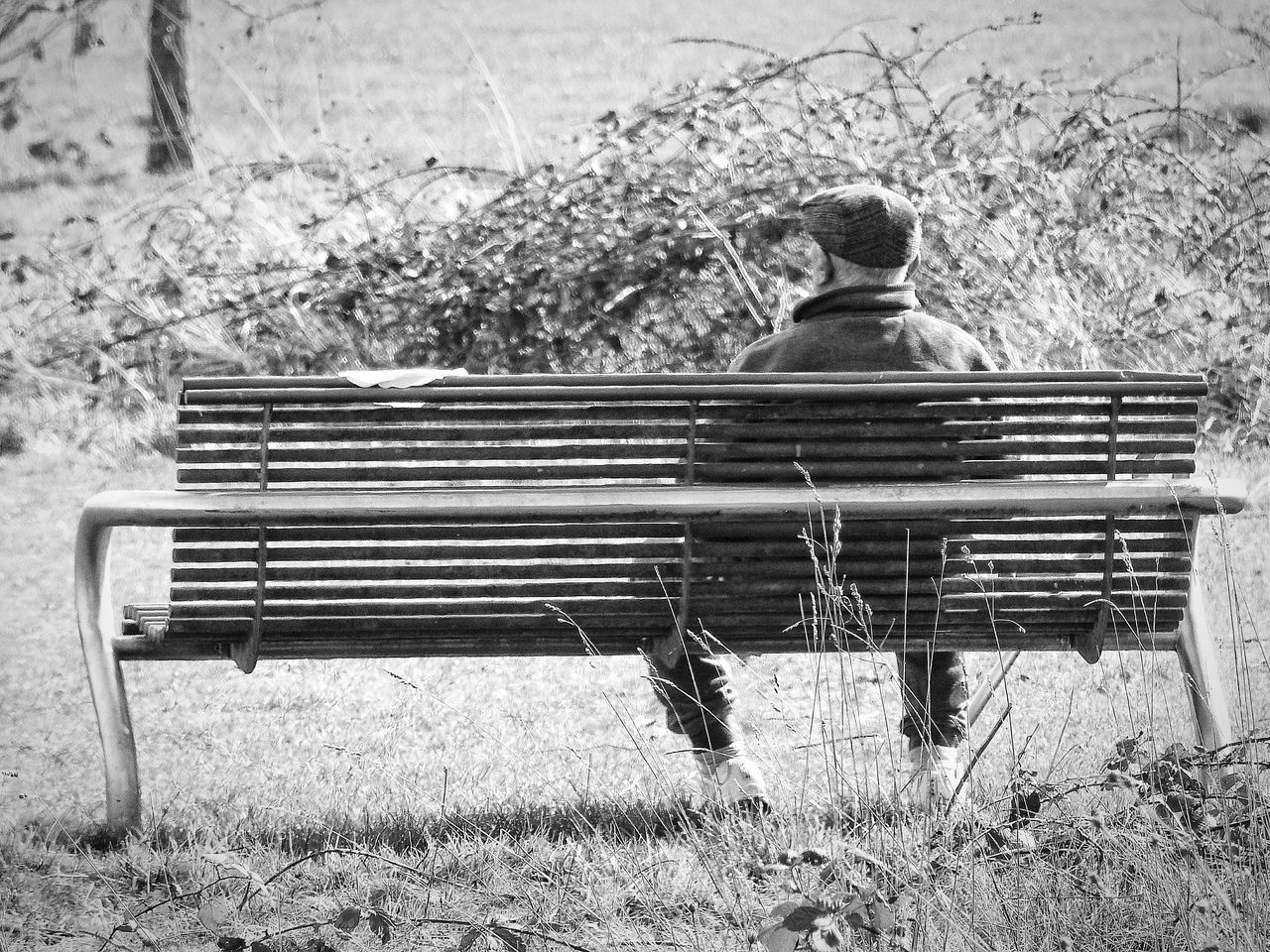 Contemplation Contemplating Bench Park Bench Outdoors Day Sitting One Person Nature Single Monochrome Black And White Park Bench Seat One Person Watching Cap Seated Lines Bushes Slatted Horizontal Lines Welcome To Black TCPM The Street Photographer - 2017 EyeEm Awards