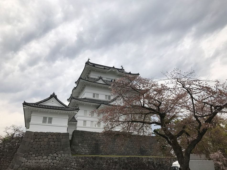 We go to Odawara castle. Architecture Built Structure Sky Building Exterior Cloud - Sky Low Angle View No People Day Outdoors Tree Roof Nature Castle Odawara EyeEm Photography
