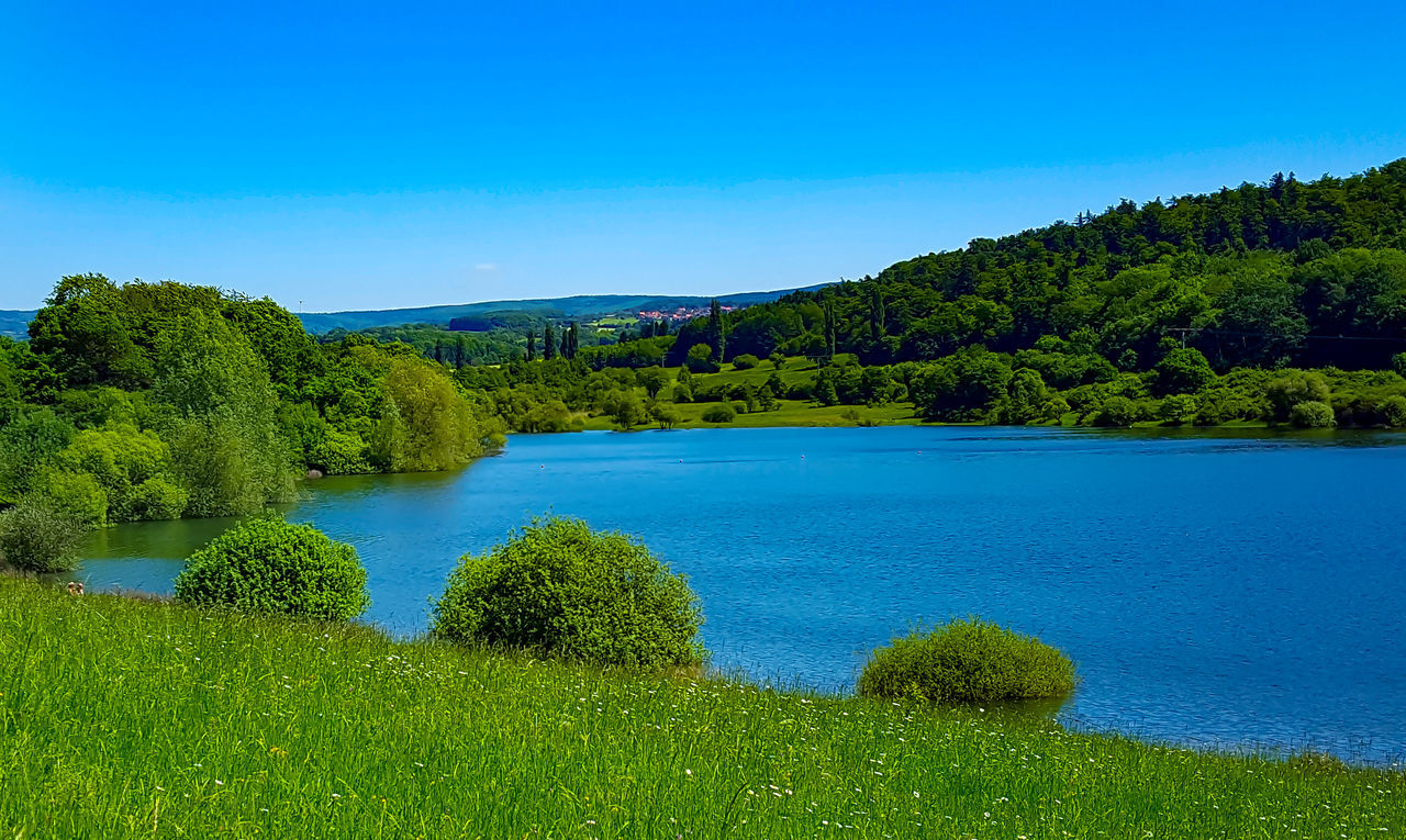 Blue Water Nature Green Color Tree Beauty In Nature Outdoors Lake Plant Sky Clear Sky Nature On Your Doorstep Eyem Best Shots Sunny Day From My Point Of View Capture The Moment l Landscapes With WhiteWall s Stausee g Germany Eyemgallery Eyem Nature Lovers  Freshness Sunlight Hessen Germany #landscape nature photography