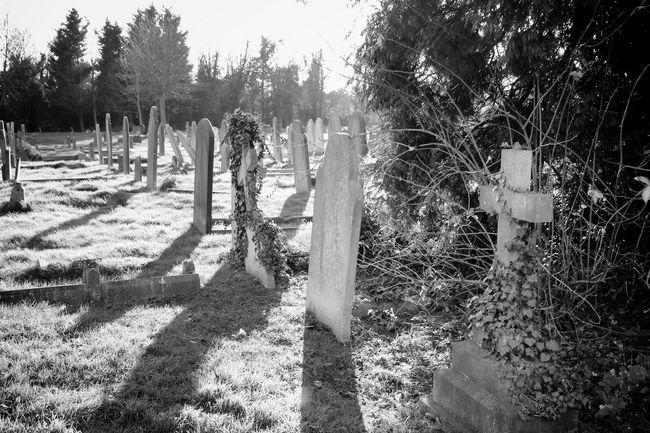 Photography Cemetery Graveyard Beauty Bw_collection Black&white Landscape Graveyard My Unique Style Monochrome Blancoynegro