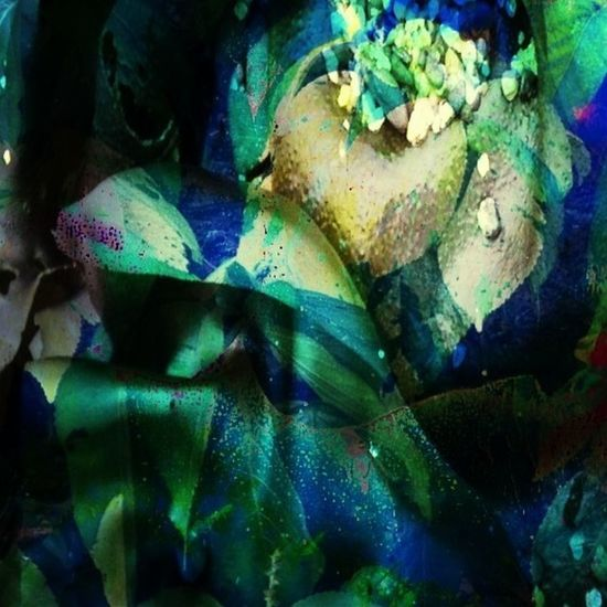 Green Inhalations (1 of 3) Abstractions In Colors Digitalart  Icolorama Artists_community