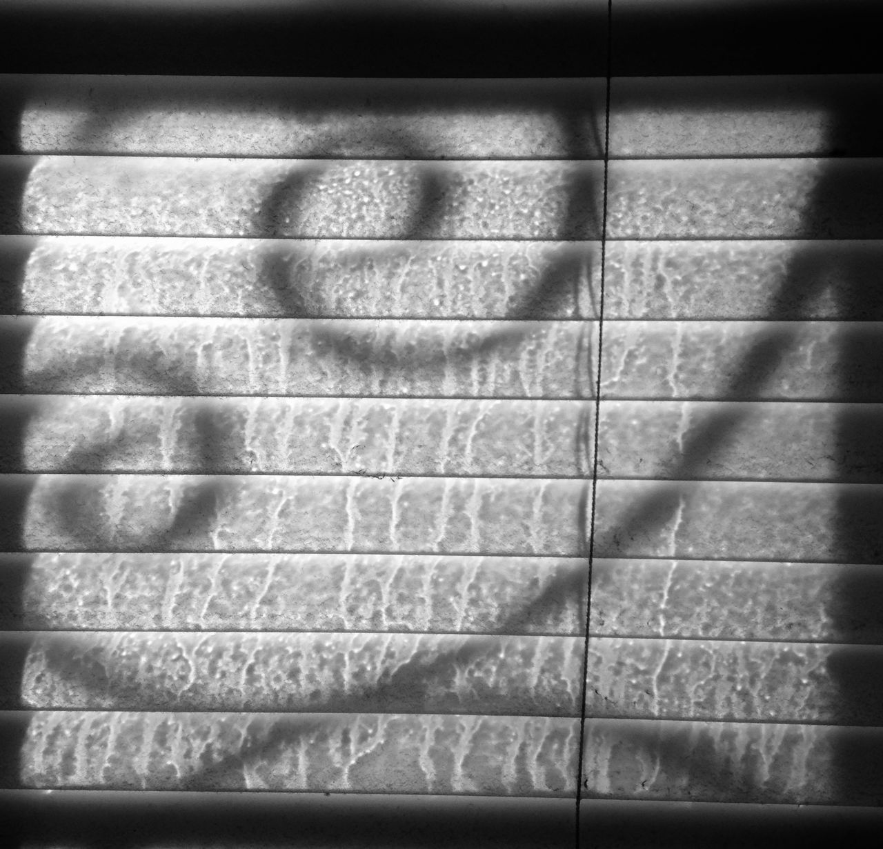 Light And Shadow Miniblinds Black & White Silhouettes And Shadows