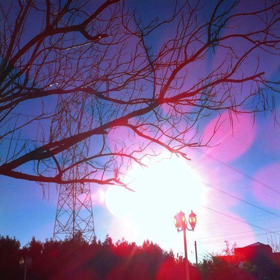 Sunshine ☀ Sol Fotografia Foto Fotographia València