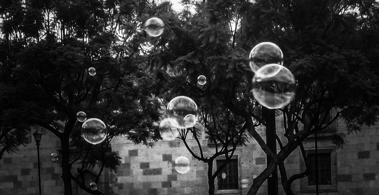 Pompas De Jabón Bubbles Blackandwhite Blancoynegro