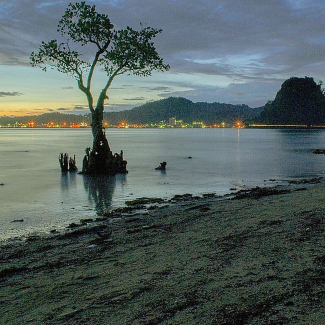 The icon Nirwanabeach Padang Pantai SumateraBarat Beach Landscape