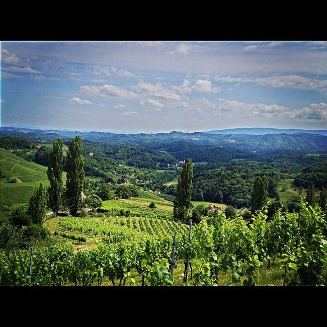 Blicke nach Slovenien