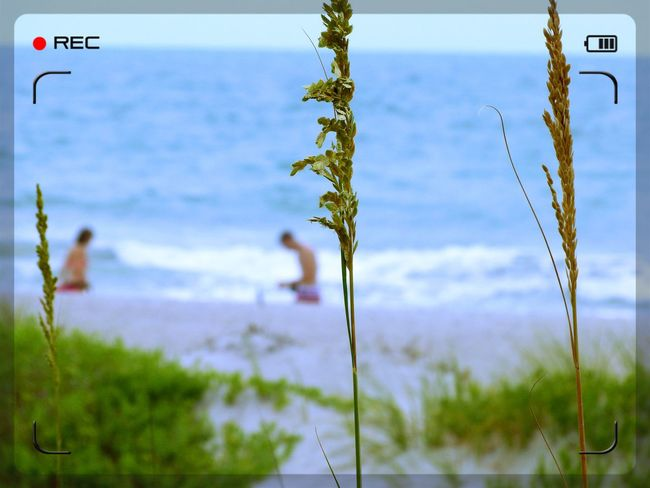 Beach Photography Beach Scenes Beachlife Blue Water Blue Sky Cape Canaveral Florida Life Life On The Beach Outdoor Outdoor Photography Outdoor Photography Beach Life People On The Beach People Photography Sand And Sea Scenery Shots Summer 2013 Summertime Where I Live My Town