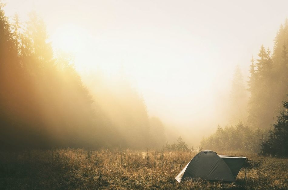 Beautiful stock photos of sonne, Beauty In Nature, Camping Site, Cold Temperature, Fog
