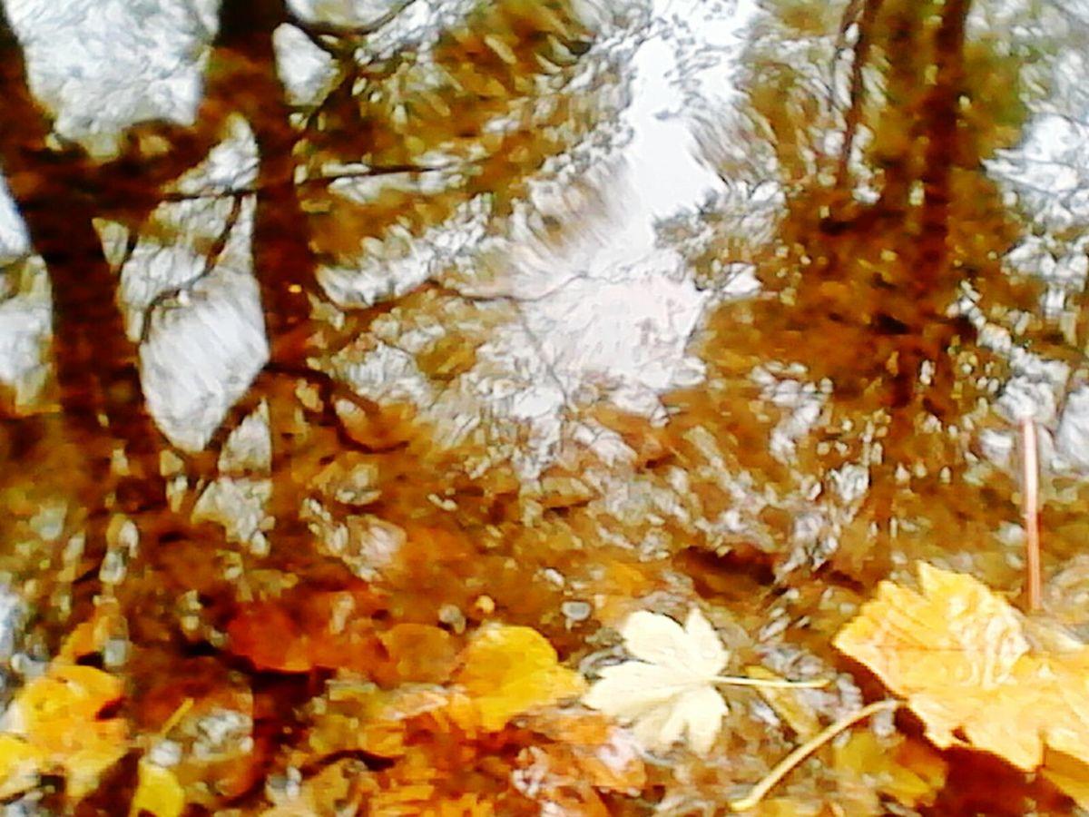 Holmfirth Autumn River Reflect
