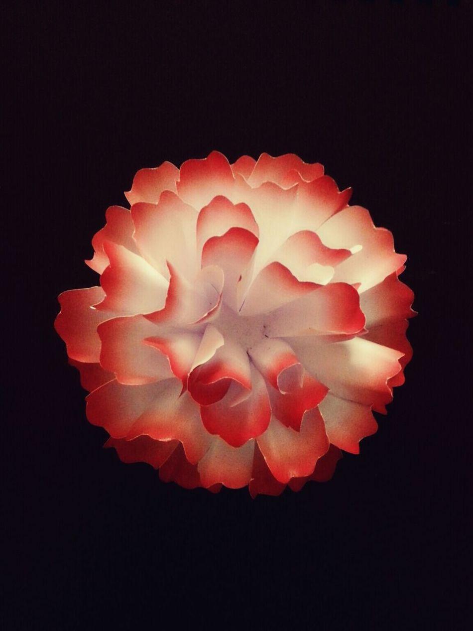 Paper Flower Crafts Handmade