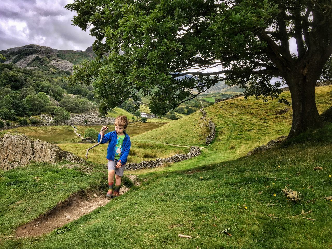 Hiking Exploring Little Langdale Lake District Nature Tree Hills Hill Bridleway The Week On EyeEem The Week Of Eyeem