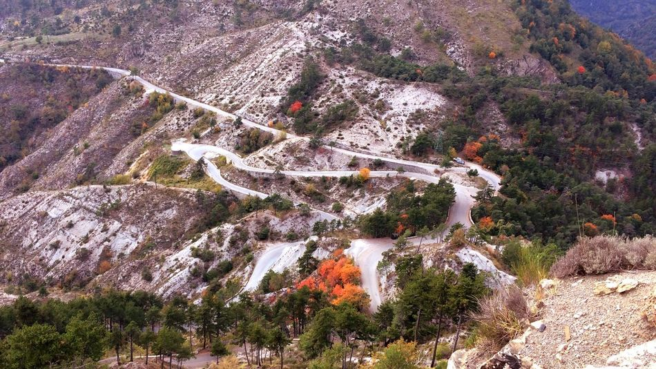 Nature Scenics Beauty In Nature High Angle View Rock - Object No People Tranquility Mountain Outdoors Travel Destinations Day Tree Winding Road