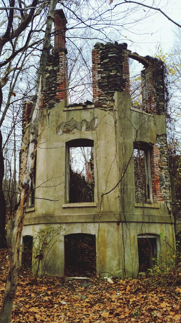 architecture, built structure, tree, old, abandoned, building exterior, autumn, day, damaged, leaf, no people, low angle view, tree trunk, outdoors, bare tree, branch, nature, sky