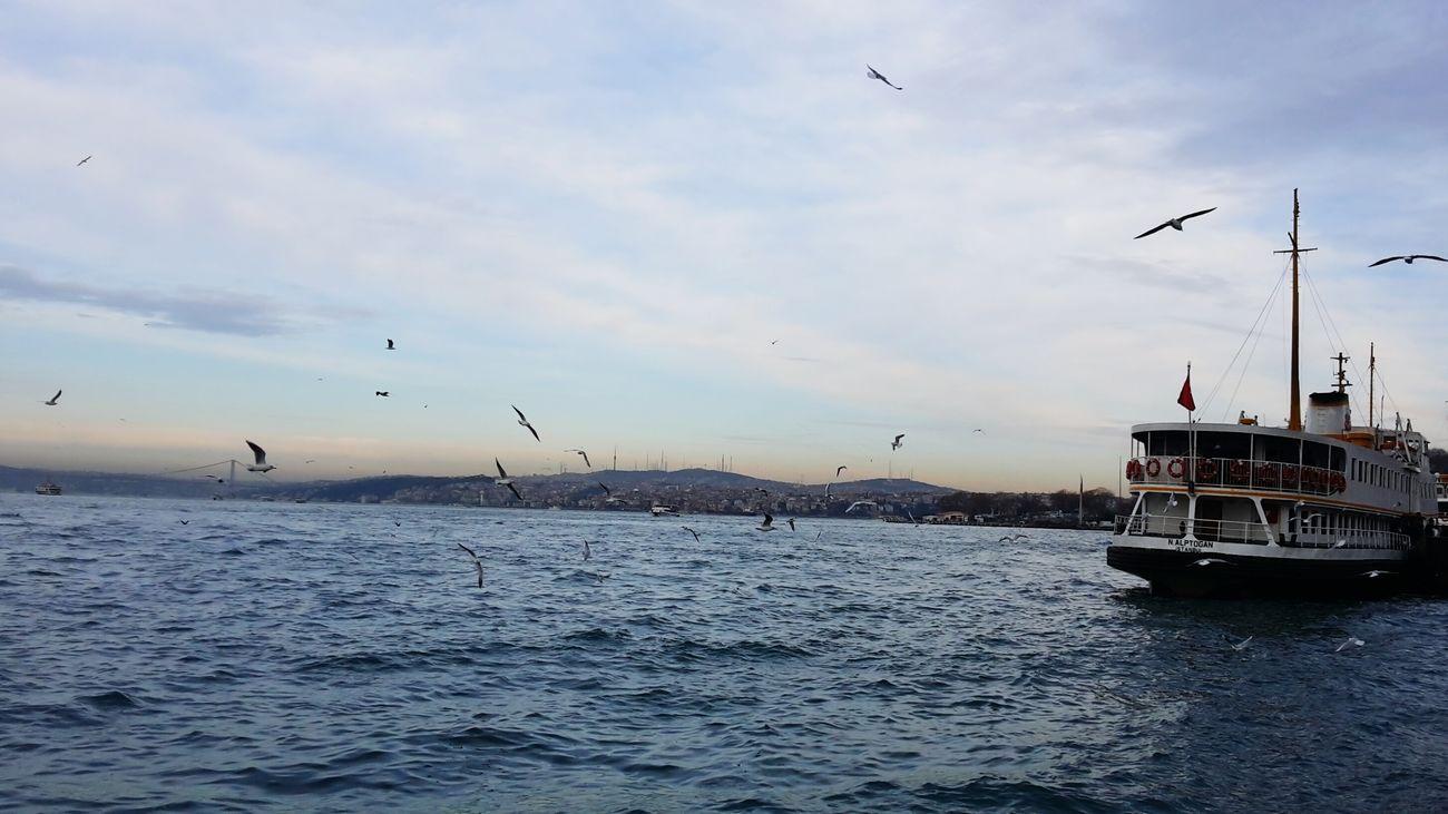 Mybest Beachphotography Eminönü/ İstanbul Loveing It