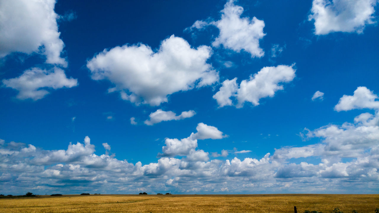 Cloud - Sky Landscape Blue Nature Day Outdoors Scenics Field Beauty In Nature Sky No People Rural Scene Summer Water Grass Fragility Texas Texas Skies Texas Landscape Texas Sky The Great Outdoors - 2017 EyeEm Awards