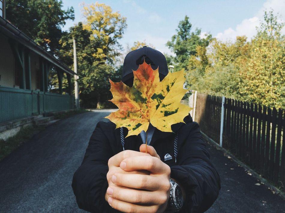 Beautiful stock photos of road, Autumn, Cap, Change, Day