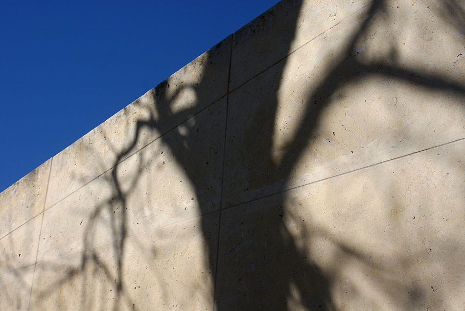 The shadow of a tree with bare branches on a stone wall, slice of clear blue sky. Architecture Beige Blue Branches Built Structure City Clear Sky Close-up Day Low Angle View No People Outdoors Pattern Sky Stone Stone Wall Sun And Shadow Sunlight Tree