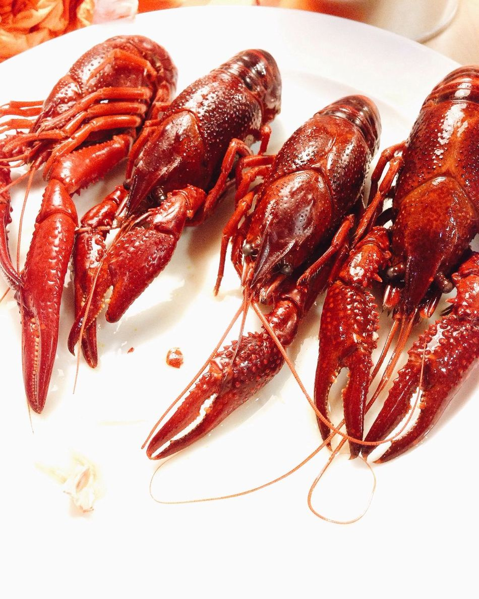 Beautiful stock photos of lobster, Austria, Cooked, Food, Food And Drink