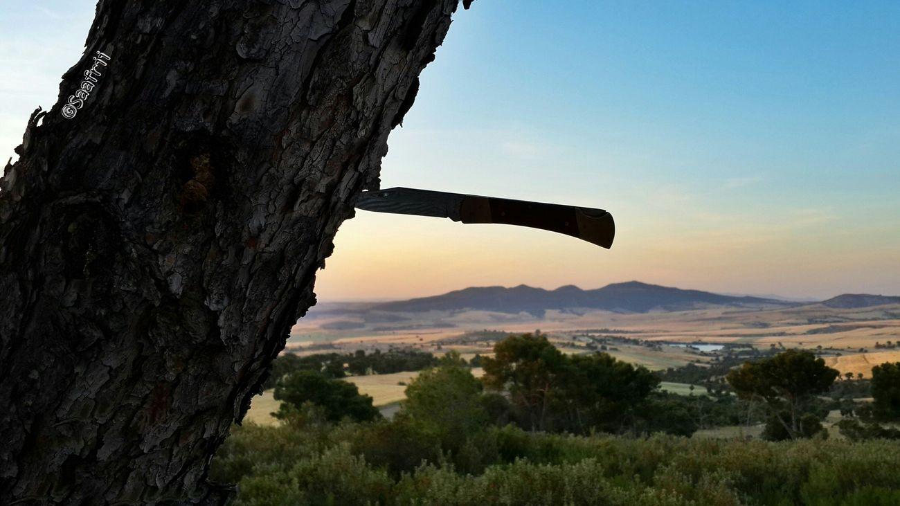 Hanging Out Hello World ElAroussa Siliana Landscape Best Shots Eyeem Tunisia Nature Tunisia Sunshine