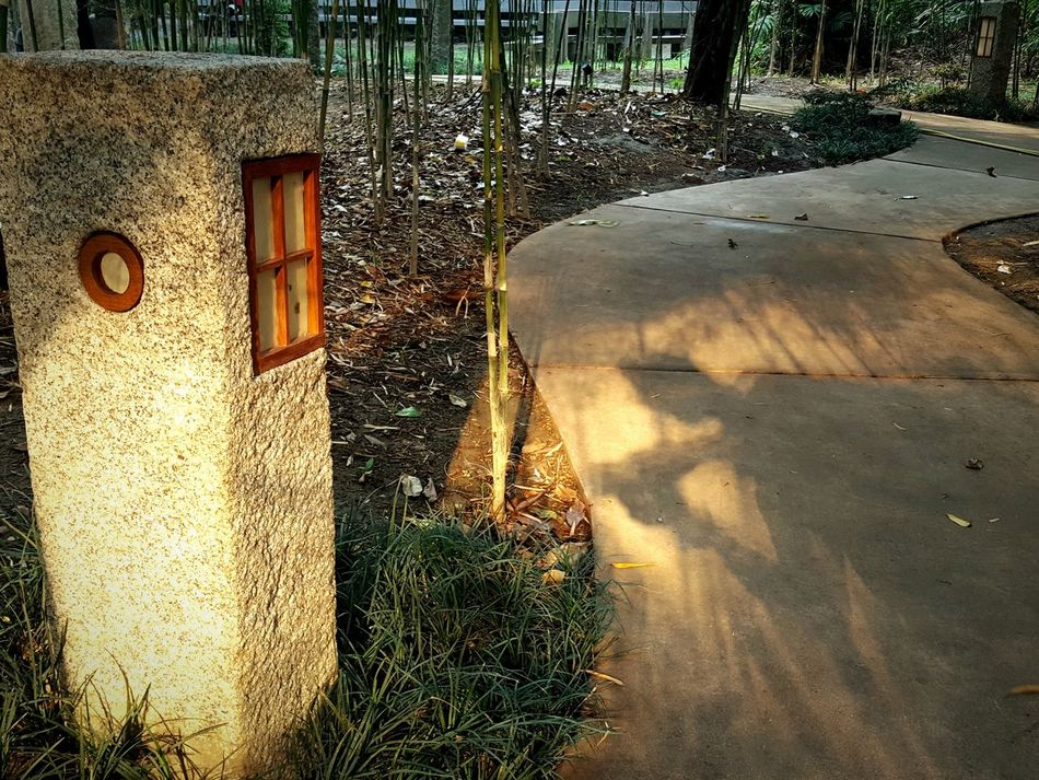 Find me. Sunlight Shadow No People Built Structure Outdoors Tree Nature Day Gardens Japanese Culture Japanese Style Eyeem Philippines Japanese Garden Plant Grass EyeEm Gallery Sunlight Dramatic Lighting EyeEmNewHere Japan Growth Nature Green Color Beauty Zen Garden