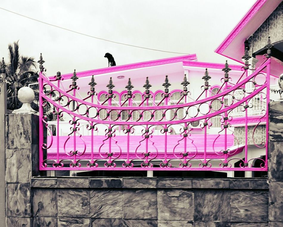 Architecture Pink Color Pink Is Beautiful Indian Culture  Barbie World Adapted To The City Millennial Pink