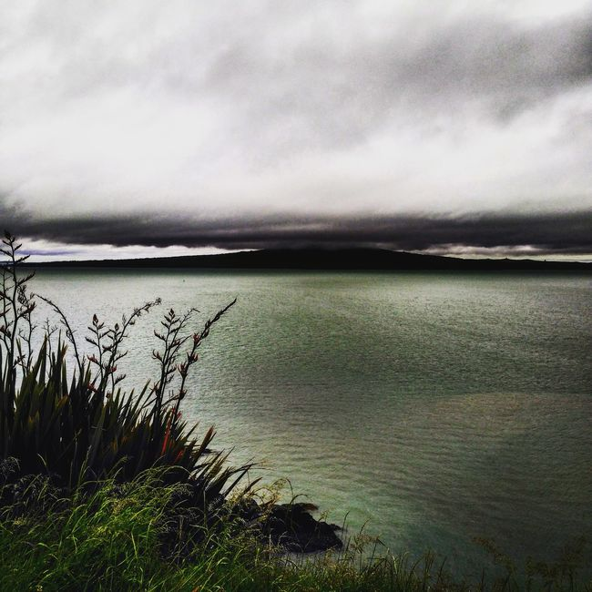 New Zealand Cloudy Day Spring Rangitoto Waitemata Harbour The Great Outdoors - 2016 EyeEm Awards