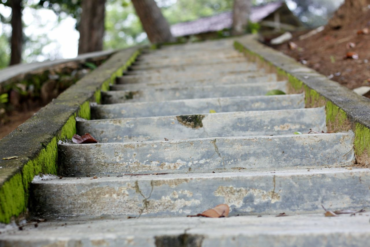 Close-up Day Nature No People Outdoors Stairs Steps Steps And Stairs Steps To Beach Wood - Material