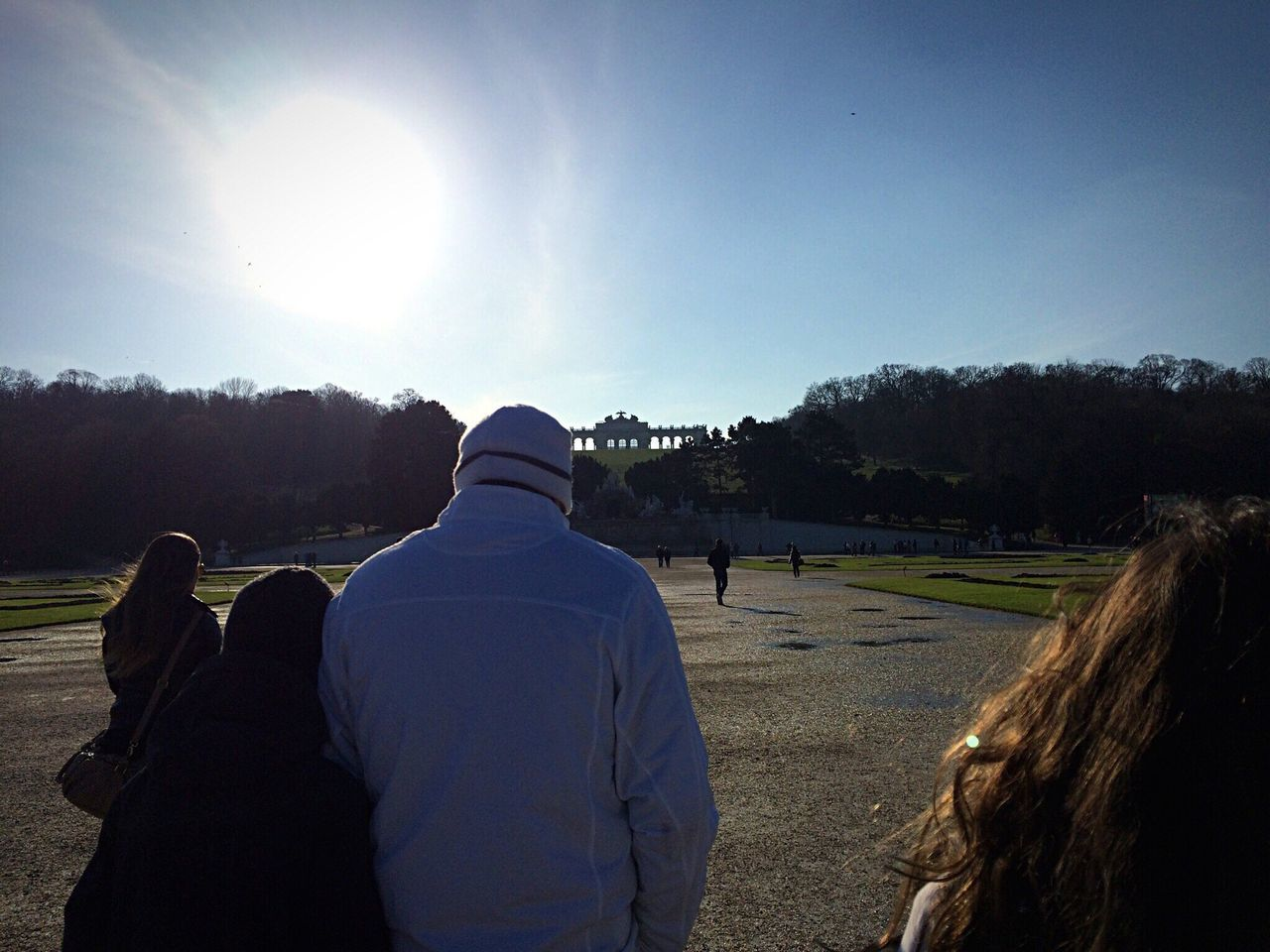 rear view, sunlight, real people, togetherness, men, sky, nature, lifestyles, clear sky, tree, day, outdoors, people