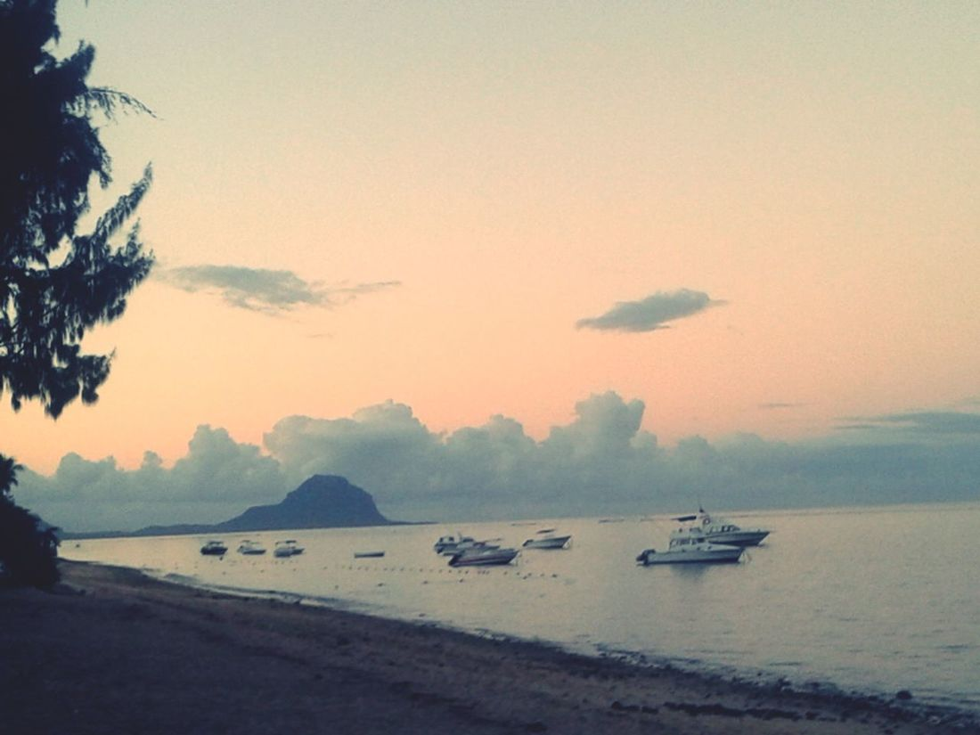 Pink sunrise Water Nautical Vessel Nature Sky Sea Beauty In Nature Mode Of Transport Transportation Sunset No People Tranquility Scenics Tranquil Scene Waterfront Outdoors Tree Beach Water Vehicle Day Pink Sunset Mauritius Millennial Pink