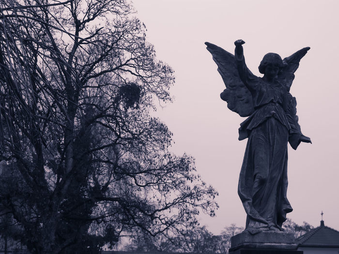 Angel Animal Wing Architecture Bare Tree Cemitery Day Human Representation Low Angle View No People Nordfriedhof Outdoors Silhouette Sky Statue Tree