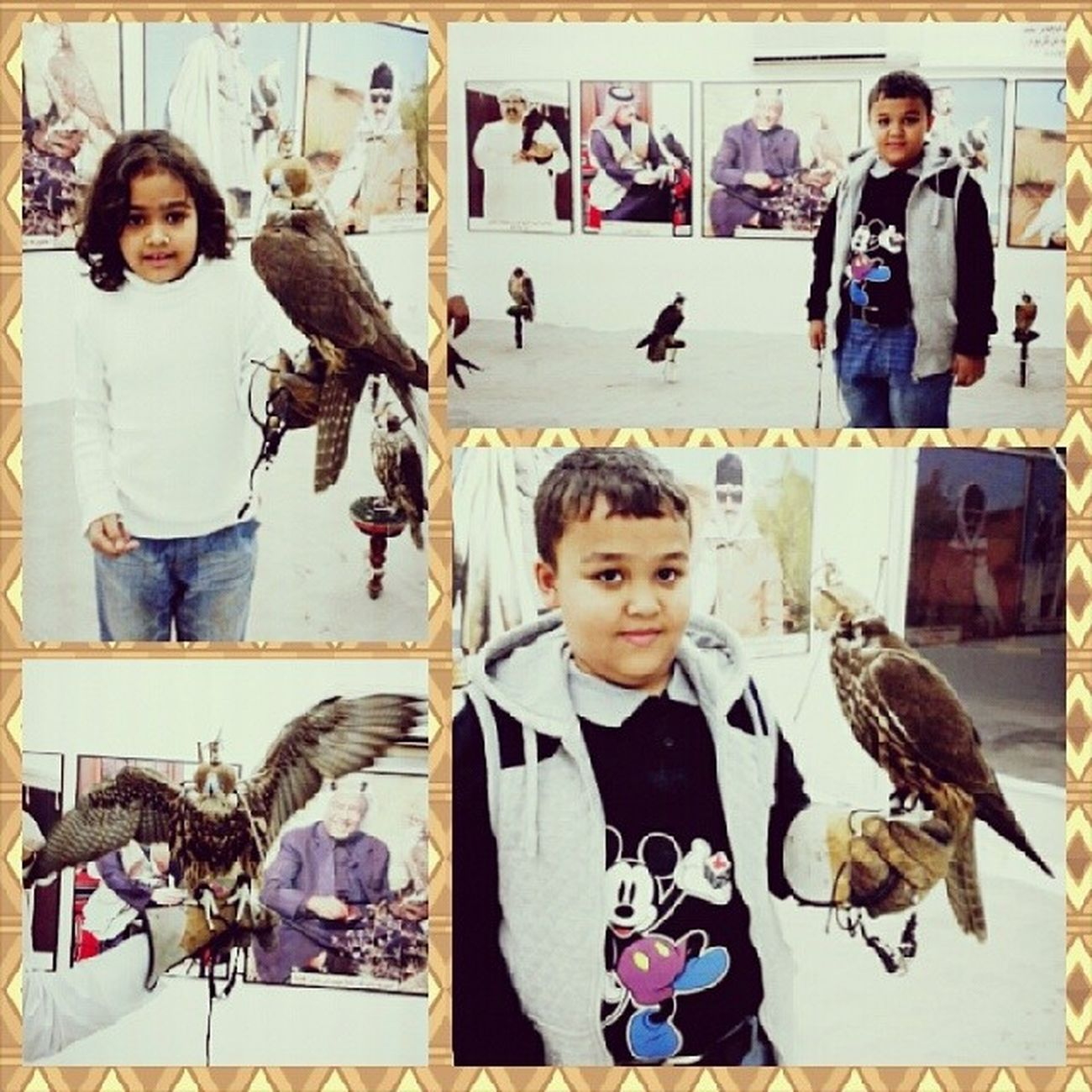 Falcons Falcon Atlanta Love qtr redskins جارح الحر kwait الجارح جير natura birds kids cute love family children life instababy sweet instagood baby childrenphoto beautiful child kid bahrain