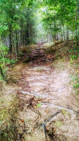 Eyeem Michigan Motox Trails EyeEm Nature Lover Nature My Running View