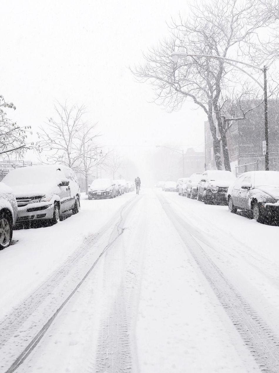 30 Degrees and Snowing Open Edit Showcase: November EyeEm Snow ❄