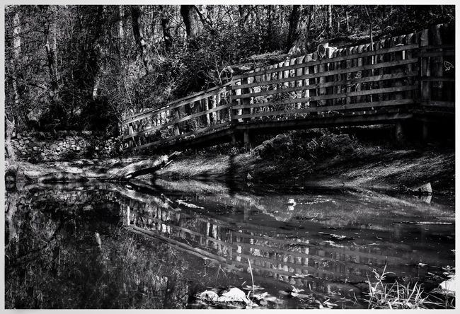 Reflection Bridge at Dean Park Kilmarnock Reflections Reflection_collection Blackandwhite Black And White Water Bridge - Man Made Structure Reflection Forest Built Structure Tree Scenics Footbridge Tranquil Scene Nature Tranquility Calm EyeEm Nature Lover Eyem Gallery Eye4photography  EyeEm Gallery EyeEm Eyemphotography