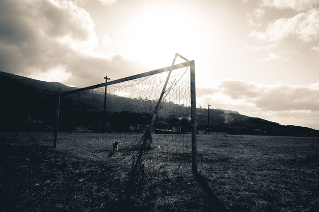 The Beautiful Game Ball Dog Football Goal Goals Grass Leisure Activity Mountain Outdoors Sky Soccer Sunset The Beautiful Game Azores Pico
